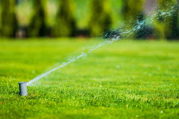 Licensed Irrigators in Montgomery County