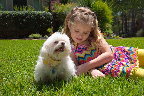 People, pets and lawn chemicals